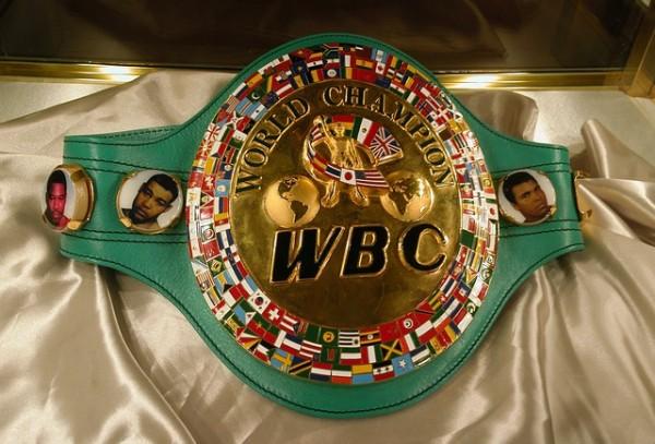 ボクシング 各階級 チャンピオン 日本人